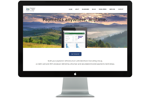 Merchant Consulting Group desktop website