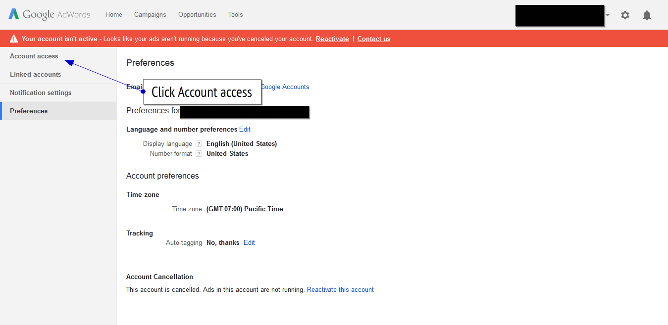 Google AdWords account access