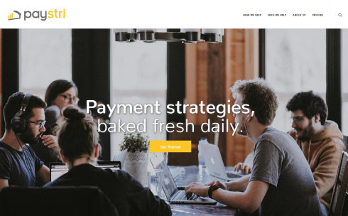 Paystri desktop website design