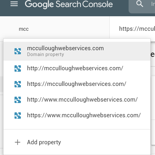 domain selector in google search console